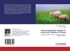 Bookcover of Gene expression studies in preantral follicles of Sheep