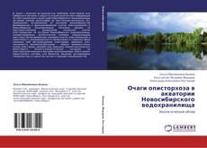 Buchcover von Очаги описторхоза в акватории Новосибирского водохранилища