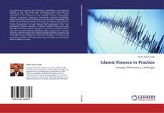 Обложка Islamic Finance in Practice