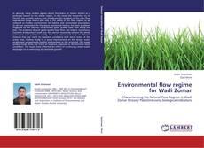 Environmental flow regime  for Wadi Zomar kitap kapağı