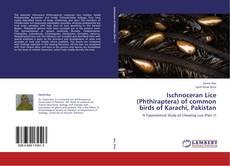 Bookcover of Ischnoceran Lice (Phthiraptera) of common birds of Karachi, Pakistan