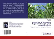 Bookcover of Elimination of SCMV from Sugarcane through Apical Meristem Culture