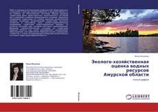 Эколого-хозяйственная оценка водных ресурсов  Амурской области的封面