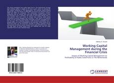 Buchcover von Working Capital Management during the Financial Crisis