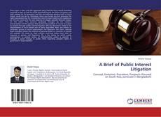Bookcover of A Brief of Public Interest Litigation