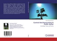 Control And Accounting In Public Sector kitap kapağı