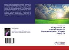 Capa do livro de Comparison of Multidimensional Measurements of Poverty Analysis