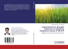 Bookcover of Improvement in drought tolerance of wheat by exogenous spray of GB & K