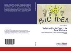 Vulnerability to Poverty in Rural Vietnam kitap kapağı