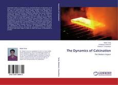 Borítókép a  The Dynamics of Calcination - hoz