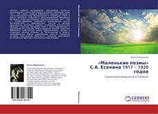 «Маленькие поэмы» С.А. Есенина 1917 – 1920 годов的封面