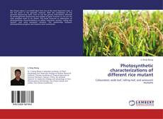 Bookcover of Photosynthetic characterizations of different rice mutant