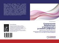 Capa do livro de Содержание бюджетных учреждений в условиях реформы