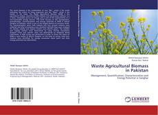 Waste Agricultural Biomass in Pakistan kitap kapağı