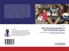 Mainstreaming gender in rural livelihood projects的封面