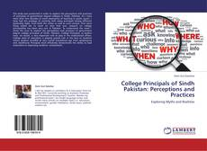 Bookcover of College Principals of Sindh Pakistan: Perceptions and Practices