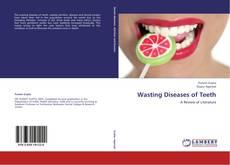 Обложка Wasting Diseases of Teeth