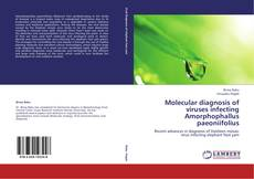Bookcover of Molecular diagnosis of viruses infecting Amorphophallus paeoniifolius