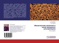Bookcover of Физические явления в поле мощного ультразвука