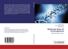 Portada del libro de Molecular Basis of Carcinogenesis
