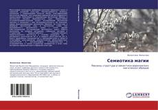 Bookcover of Семиотика магии