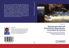 Borítókép a  Wastewater-Derived Disinfection Byproducts: Formation & Control - hoz