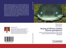 Buchcover von Drying of African Catfish (Clarias gariepinus)