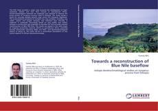 Towards a reconstruction of Blue Nile baseflow的封面