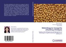 Bookcover of Meloidogyne incognita attacking Chickpea