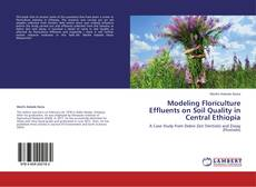 Modeling Floriculture Effluents on Soil Quality in Central Ethiopia的封面