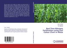 Bookcover of Real Time Nitrogen Fertilization using Leaf Colour Chart in Maize