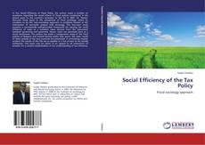 Copertina di Social Efficiency of the Tax Policy