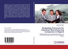 Bookcover of Budgeting Processes for Improved Manufacturing Companies in Nigeria