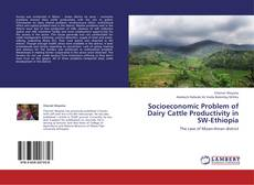 Socioeconomic Problem of Dairy Cattle Productivity in SW-Ethiopia的封面