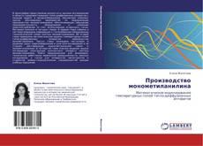 Bookcover of Производство монометиланилина