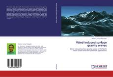 Wind induced surface gravity waves kitap kapağı