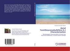 Bookcover of Aerial Yam/Dioscoreabulbifera (L.) Characterization