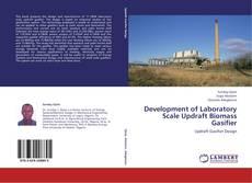 Development of Laboratory Scale Updraft Biomass Gasifier的封面