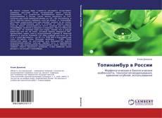 Обложка Топинамбур в России