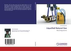 Capa do livro de Liquefied Natural Gas