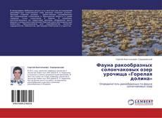 Фауна ракообразных солончаковых озер урочища  «Горелая долина»的封面