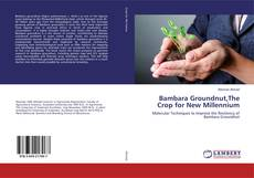 Bookcover of Bambara Groundnut,The Crop for New Millennium