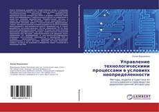 Управление технологическими процессами в условиях неопределенности kitap kapağı