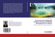 Bookcover of Economics of Integrated Surface and Ground Water Management in Jakarta