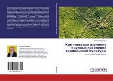 Bookcover of Комплексное изучение крупных поселений трипольской культуры