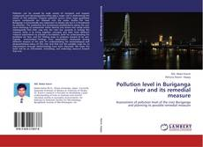 Bookcover of Pollution level in Buriganga river and its remedial measure
