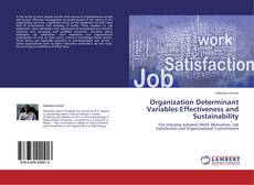 Organization Determinant Variables:Effectiveness and Sustainability的封面
