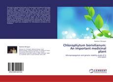 Buchcover von Chlorophytum borivilianum:An important medicinal plant