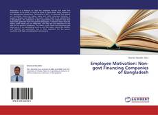 Bookcover of Employee Motivation: Non-govt Financing Companies of Bangladesh