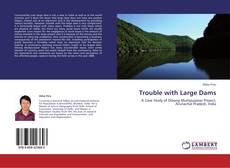 Bookcover of Trouble with Large Dams